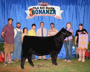 3rd Overall  2014 Belt Buckle Bonanza