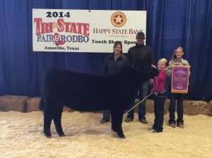 Reserve Grand Champion Heifer  2014 Tri State Fair  Shown by Hanna Gruhlkey